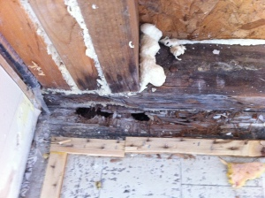 Improperly Repaired by Previous Contractor
